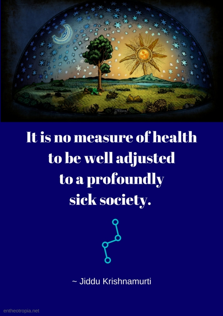 It is no measure of health to be well adjusted to a profoundly sick society. Jiddu Krishnamurti Read more at_ https_www.brainyquote.comquotesjiddu_krishnamurti_107856